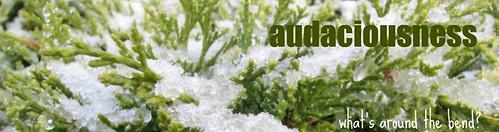 audaciousness header spring 2009