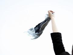 _我在煙火老去前抵達。 (eliot.) Tags: sophie taiwan olympus 台灣 eliot happytogether 好望角 一口腥 九格把戲集 水巾似流言 青春終荻花 故事草稿 煙火將老 彩虹不固執 煩惱的驕傲