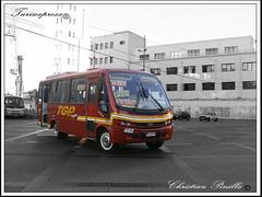 Maxibus Astor LO-915-42.5 Ciferal Express