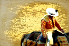 PICADOR - LA MALAGUETA (J Fuego) Tags: horses espaa horse caballo cheval caballos andaluca spain fiesta andalucia arena toros tradition andalusia arene espagne malaga corrida toro mlaga chevaux picador torero tauromaquia toreros arenes tercio taureaux feriademlaga ruedo lamalagueta concordians ruedos