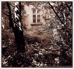 Rural Abandonment 16 (Violen's photography) Tags: old house building abandoned sepia rural village empty country poland polska forsaken tone decayed toning