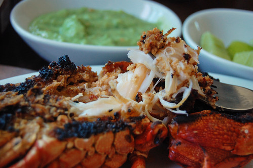 La Cocedora De Langosta Lobster Al Gusto