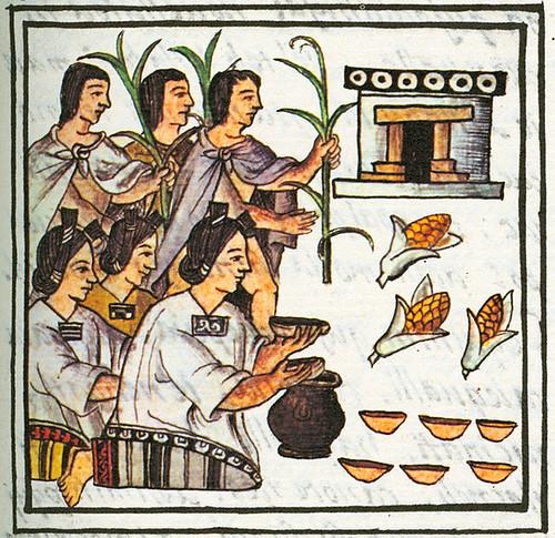 ofrenda de maíz-códice florentino