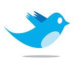 Twitter - Bird Logo