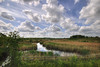 England: Northamptonshire - Over the Fence (Tim Blessed) Tags: uk sky nature water clouds reflections reeds landscapes countryside scenery lakes ponds superaplus aplusphoto singlerawtonemapped
