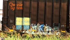 dirt5 (?) (mightyquinninwky) Tags: railroad overgrown geotagged graffiti la weeds tag tracks railway tags tagged railcar rails boxcar graff graphiti nsf trainart paintedtrain railart paintpen chessiesystem paintedsteel evansvilleindiana taggedboxcar paintedboxcar howellarea geo:lon=87609626 exceedsplatef markallpen markallpenart paintedrailcar paintpenart taggedrailcar geo:lat=37961348