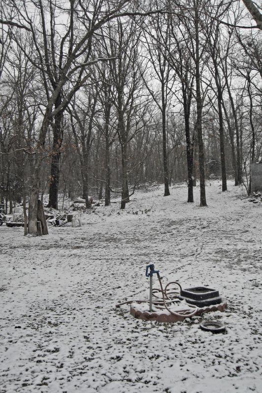 February 28 Snow