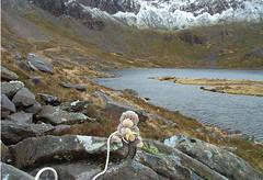 Chump climbs Cadair Idris