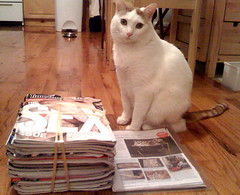 "many months of ""time out ny"" culled - recipes, places to go, diy, etc clipped for later"