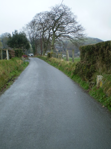 Down the lane