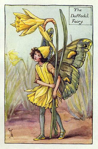 006-daffodil_flower_fairy