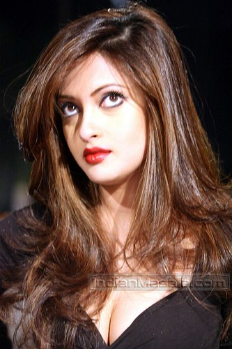 Actress Riya Sen photo