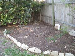Sad Back Garden