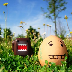 Fugitive eggs (mimmopellicola) Tags: fashion funny sony lovers domo eggs domokun sonycybershot delicius w300 flickrelite mimmopellicola