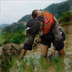 Yes, my baby on my back (NaPix -- (Time out)) Tags: life morning portrait food woman black mountains reflection green water work landscape hope asia southeastasia view rice paddy good farming workin