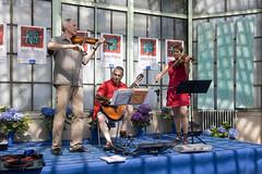 Die Musiker bei der Probe (ottstock) Tags: arenzano italienitaly