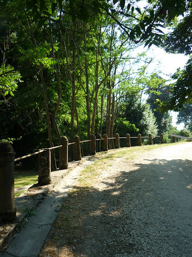 cascine di Tavola_passerella sul viale dei Lecci