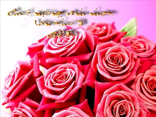 3683269093_749a8473bf.jpg
