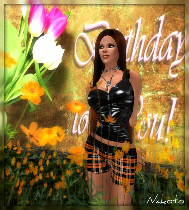 2009_07_03 festa nim_003