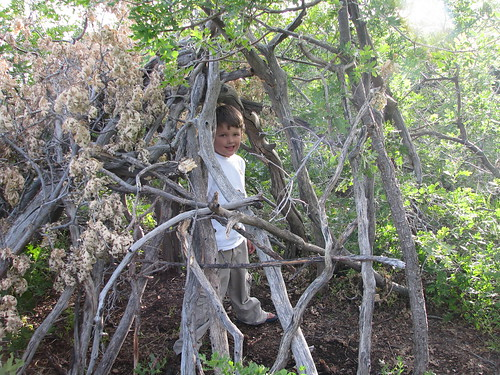 found: teepee
