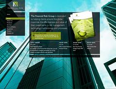 FA - Financial Risk Group (fabrik_agency) Tags: web webdesign identity interactive branding