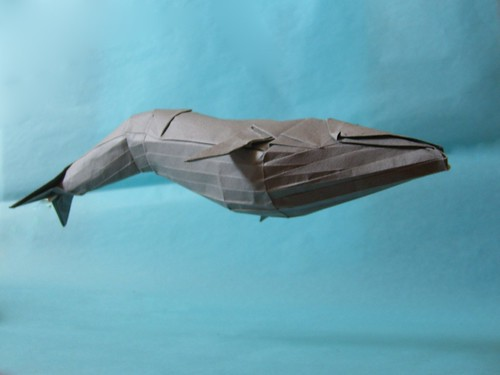 Model Blue Whale Diagram Works Of Satoshi Kamiya