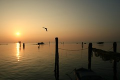 silent fly... (Blue Spirit - heart took control) Tags: venice sunset reflections fly seaside tramonto venezia pellestrina lavevomessainbnmanonèmaleneancheacolori