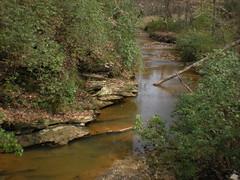 13 - walnut creek 1