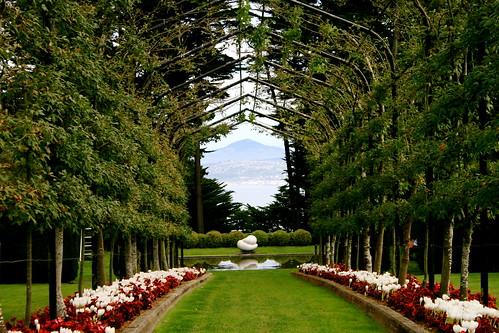 Symmetry & a view