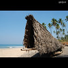 തണല് (sash/ slash) Tags: sea beach nikon kerala varkala sash shore flickrmeet kollam sajesh kkgmar2009