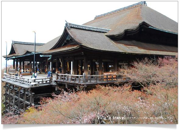 【京都春櫻旅】京都旅遊景點必訪~京都清水寺之美京都清水寺27