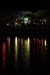 Hanami Light (jasohill) Tags: trip pink flowers light red 15fav reflection nature water festival japan cherry landscape photography 350d rainbow post blossom illumination off iwate canon350d     2009 tohoku jasonhill kitakami   canonef50mmf18ii tenshochi