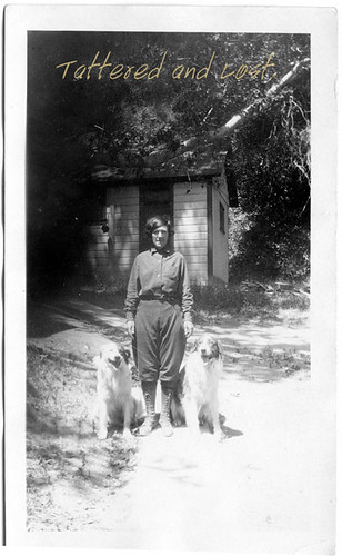 woman w.dogs_tatteredandlost