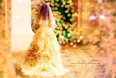 Just A Dream (*iskandar) Tags: wedding love beauty yellow canon army eos rebel bride golden bokeh dream fake just ethereal carrie emotional heartfelt realm 450d mywinners bokehs myamatuerishweddingshots