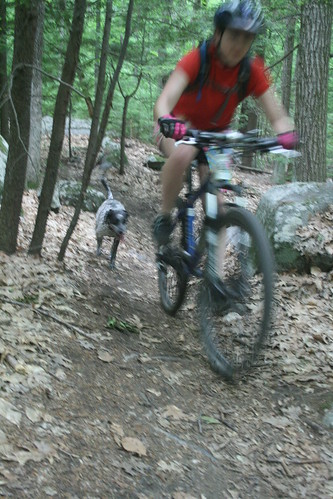 Mountain Biking with Misty