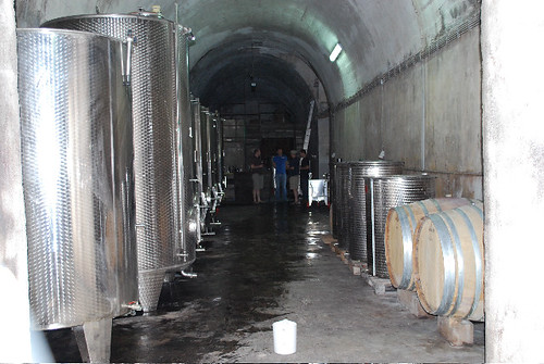 Piquentum winery in an old cistern