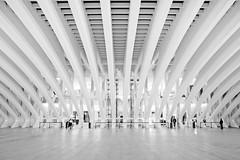 Calatrava, Oviedo. (Maria Artigas) Tags: arquitectura asturias calatrava oviedo centrocomercialbuenavista
