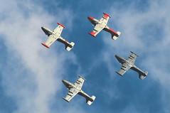 RNLAF Open Day 09 (archangel 12) Tags: nikon contrail display hawk smoke air harvard formation f16 solo hunter vulcan airforce f18 lucht viper saab f5 opendag brabant beech redarrows typhoon stunt uden airbase aerobatic aerobatics pyrotechnics volkel dc2 d300 mig29 patrullaaguila luchtmacht royalairforce alphajet patrouilledefrance formationflying fulcrum freedomfighter saab105 koninklijkeluchtmacht strikemaster nf5 turkishstars royaljordanianfalcons luchtmachtdagen vliegbasis nikon70300mmvr stuntteam nikond300 marcheverte