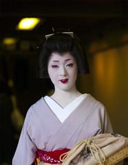 Miyako no Nigiwai suppl.1 (Onihide) Tags: japan kyoto explore maiko geiko geisha kotoha  gohanamachi miyakononigiwai gokagai