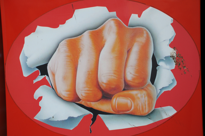 fist_6858 web