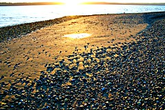 Reflections of the sunset in the sand (Krista Roesinger) Tags: ocean sunset sun beach gold pacificnorthwest pugetsound goldensunset tulalip tulalipshores sandandsea savebeautifulearth mymuseiswithmehere refelctionreflection phototakenbykristalroesinger