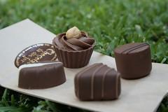 Chocolate of WIN