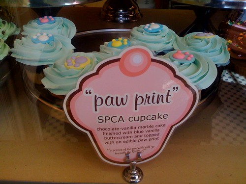 Cupcakes - for the SPCA