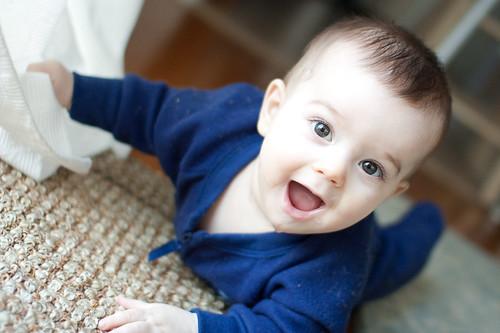 Jasper at 7 months