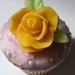 Spring Birthday Cupcakes for Sandrine