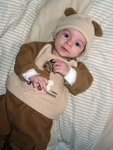 Finn in his little doggie suit, given to him by Denise