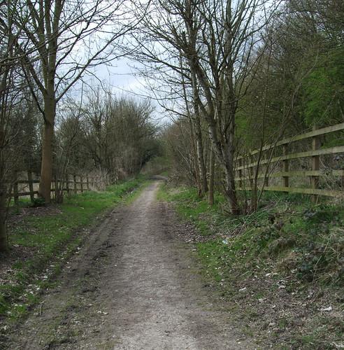 surreyironrailway