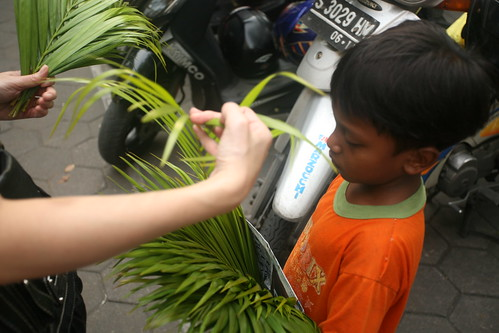 buying palm leaves