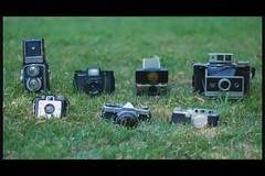 Camera Love! (indie_danielle) Tags: friends love rollei nc video spring hug kiss northcarolina raleigh lovers animation april 365 olympusom1 stopmotion 200904 holga120sf rolleicord cameralove sonaronestep mycameracollection polaroidsx70landcamera polaroidlandcamera360 kodakbrownieholidaycamera 042009 leicaiiifrd twisted365
