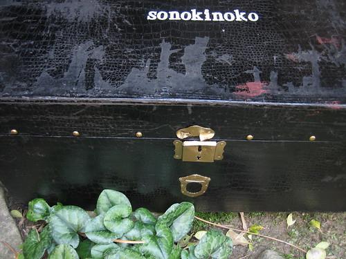 kinoko200951 036